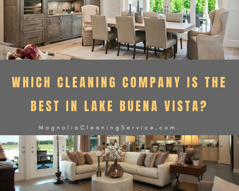 Best Cleaning Company in Lake Buena Vista?